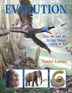 loxton_evolution