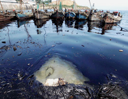 Chinese oil spill. Click image to expand.